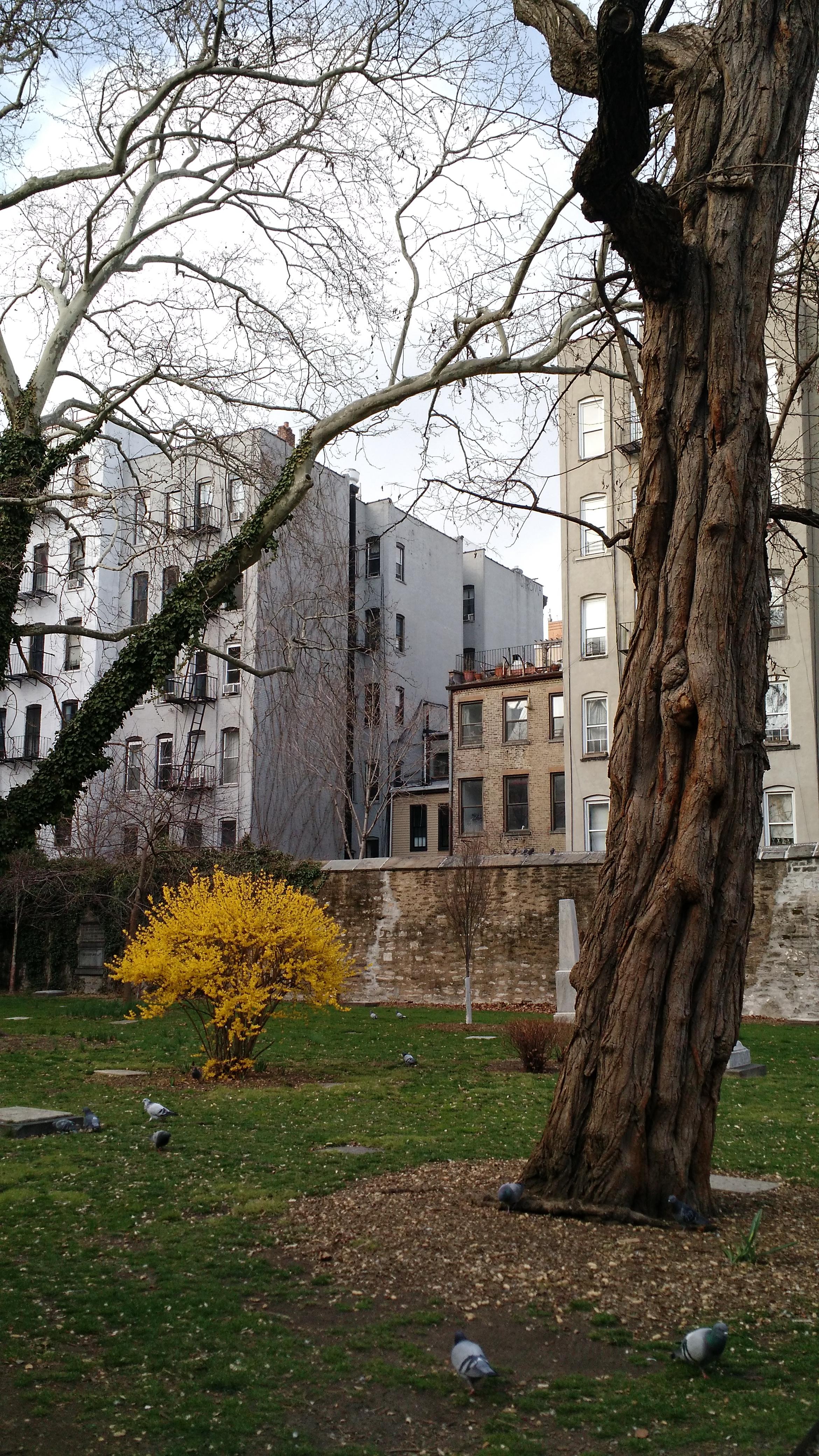 spring in graveyard